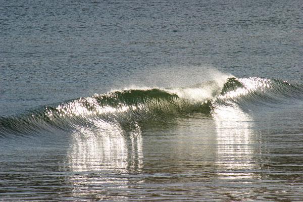 cali2005_waves_slo